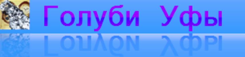 Голуби Уфы 18+